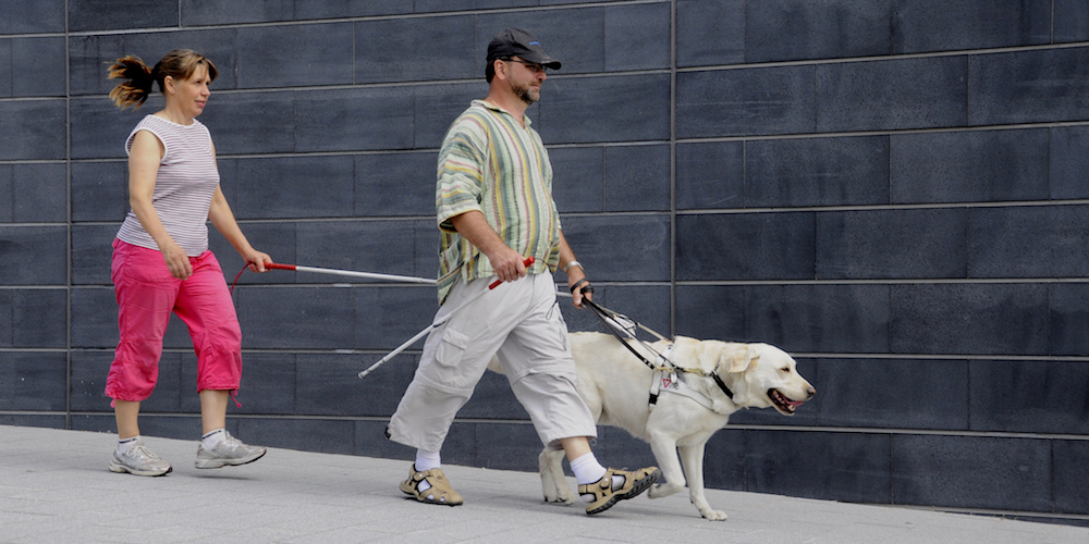 A woman with a sight loss cane walks behind a man with a guide dog.