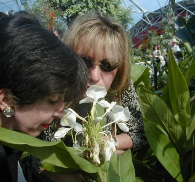 Two women stop and smell the flowers.